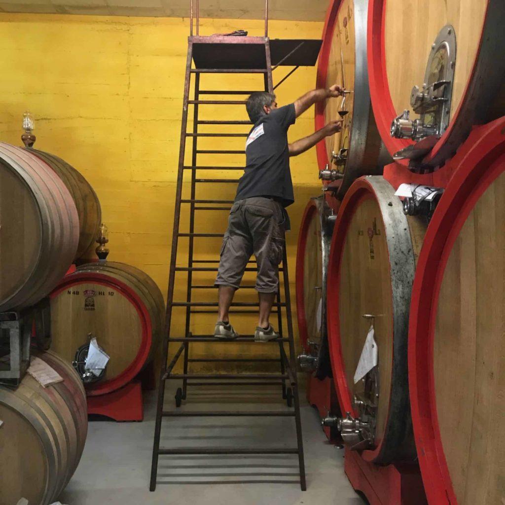 Divino Piemonte | Winetasting